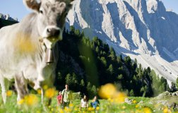 Dolomites holidays 2