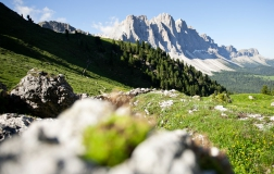Hiking-holiday in the Dolomites 6