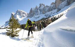Winter-holidays in the Dolomites 2